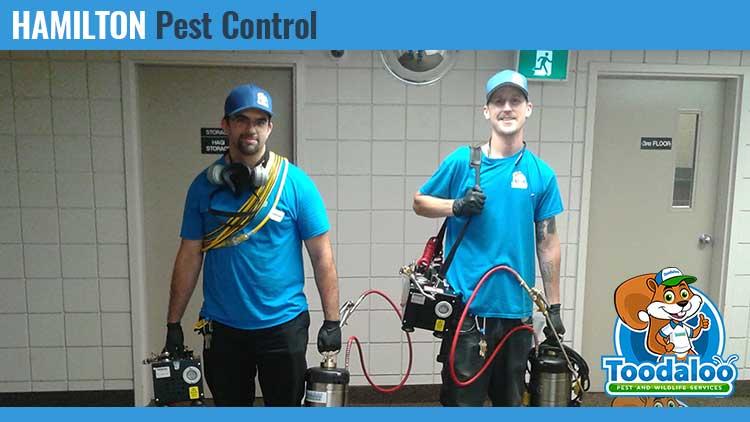 hamilton pest control