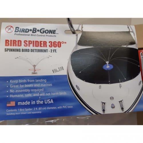 Bird Spider 2 ft